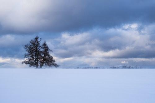 Landschaftsfotografie - Winter | Workshop